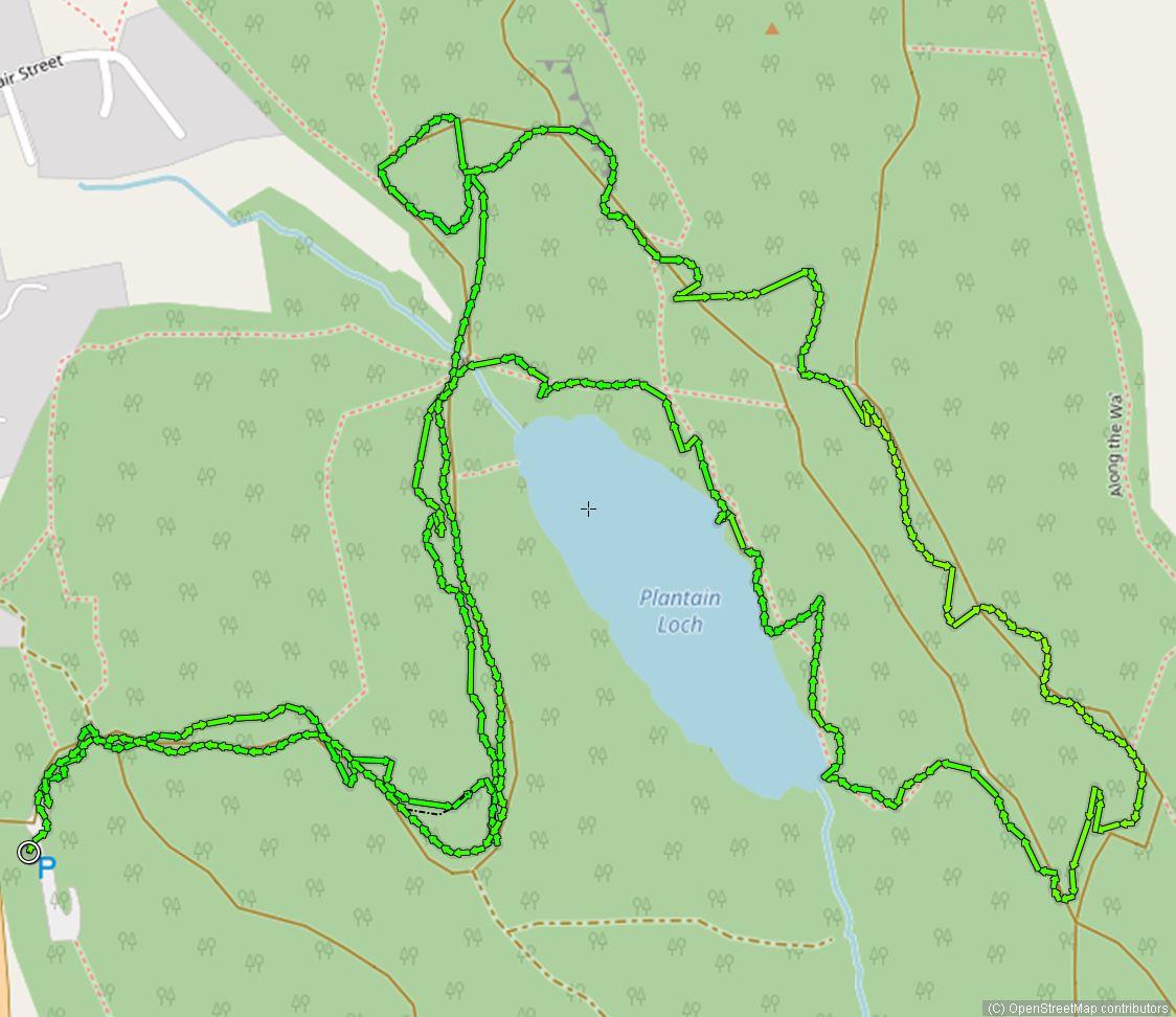 Walk Dalbeattie town wood loop 5